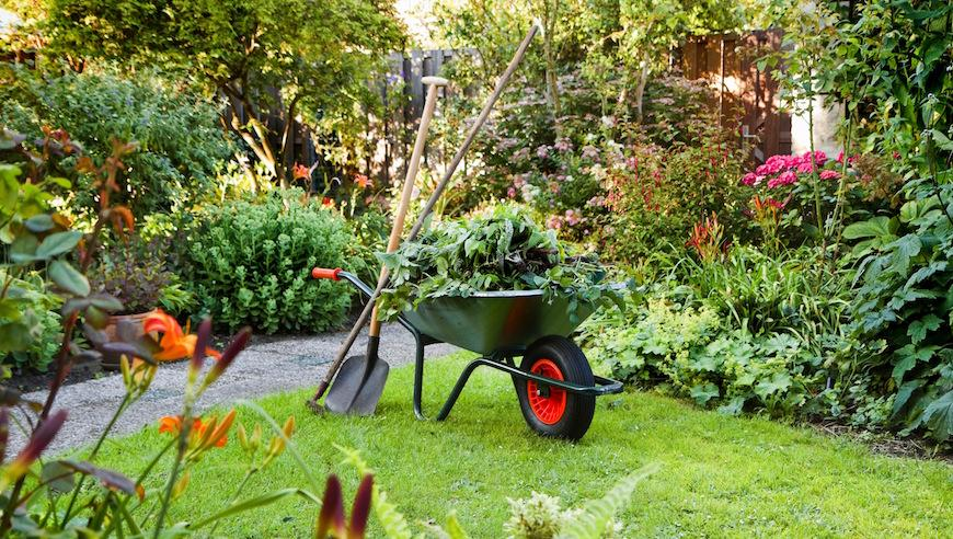 Perfect Garden Maintenance