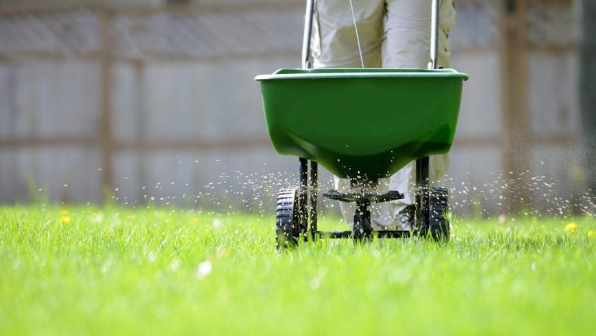 The Cost of Lawn Fertilisation