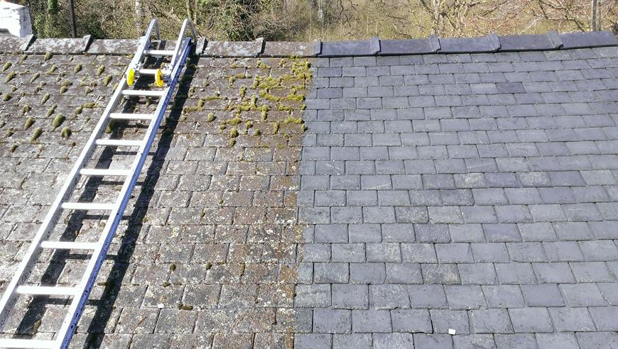 removing roof moss
