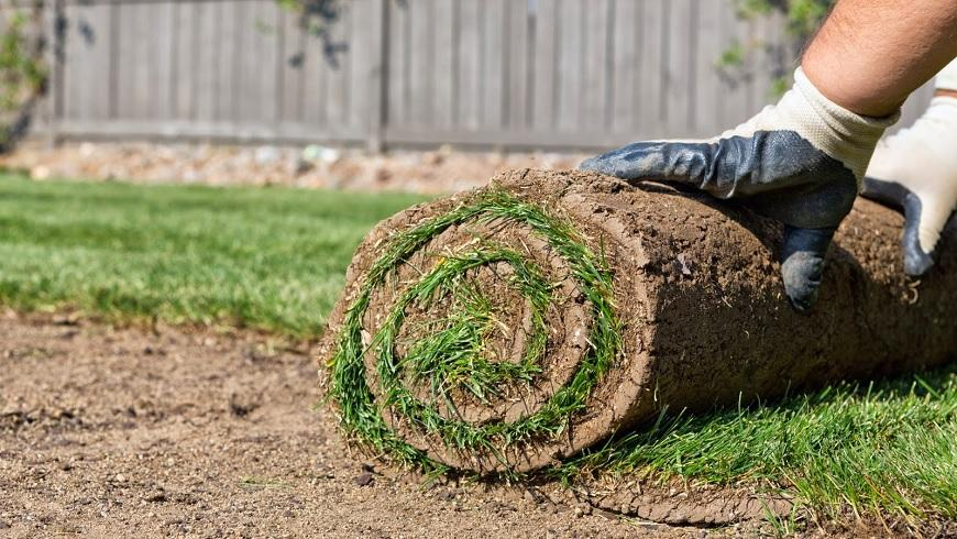 The Cost To Lay Turf